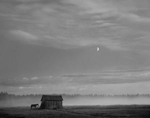 House in Finland by Pentti Sammallahti