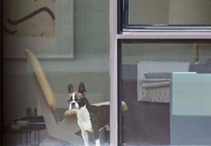 Image from The Neighbors by Arne Svenson