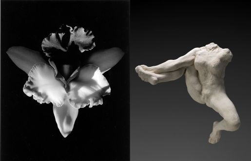 mapplethorpe-rodin-071