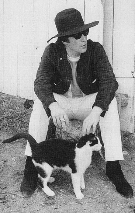 Beatle with cat