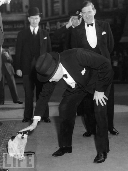 Churchill with cat, Jock.