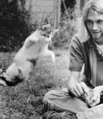 Cobain with leaping kitty