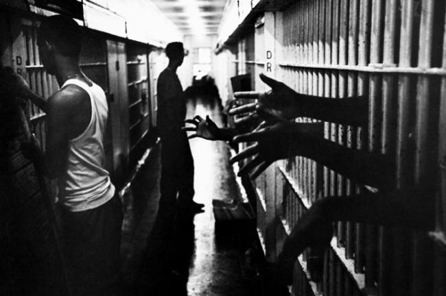 freed-prisonneworlea1299436862249